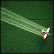 roundup sprayed over gmo crops